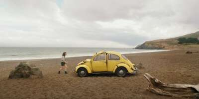 2553_bumblebee_rodeo beach_2.png
