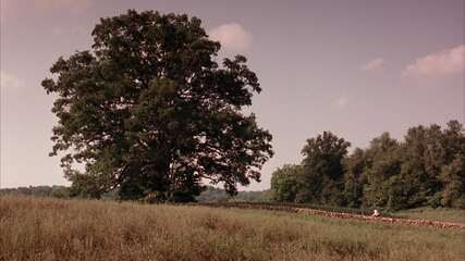 278_02_TheShawshankRedemption_OakTree_01.png