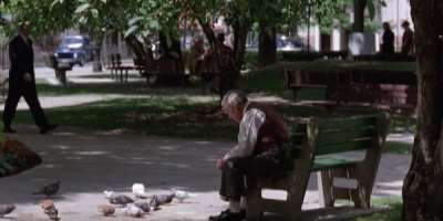 3650_the shawshank redemption_central park - downtown mansfield_1.jpeg