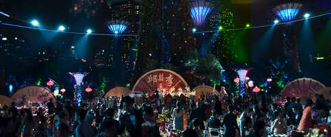 Media 2916_crazy rich asians_gardens by the bay - the supertree grove_0.jpg