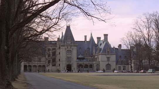 Still 3306_being there_biltmore estate_1.jpg
