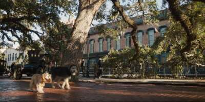 3615_lady and the tramp_old savannah cotton exchange_0.png